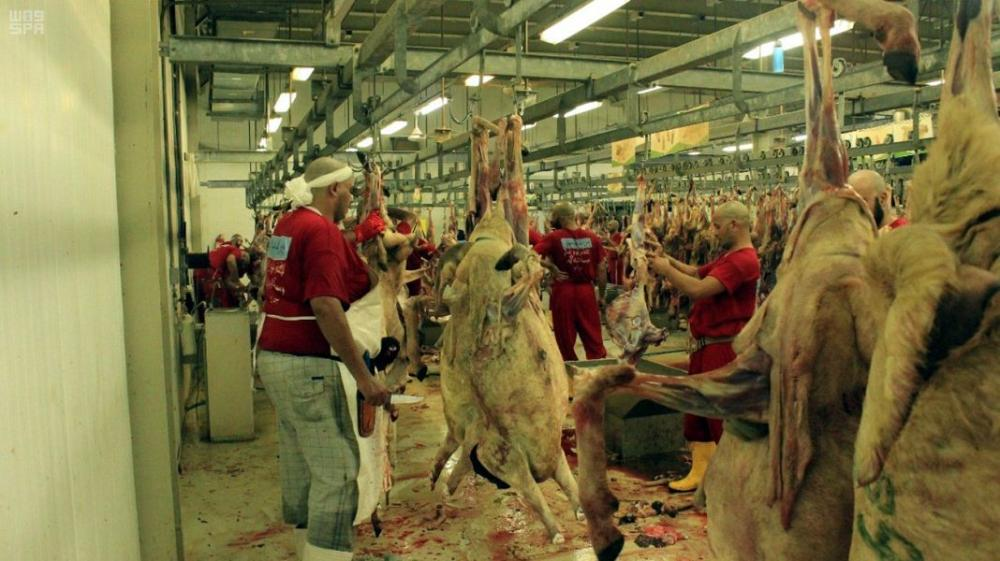 Slaughtering of sacrifical animals