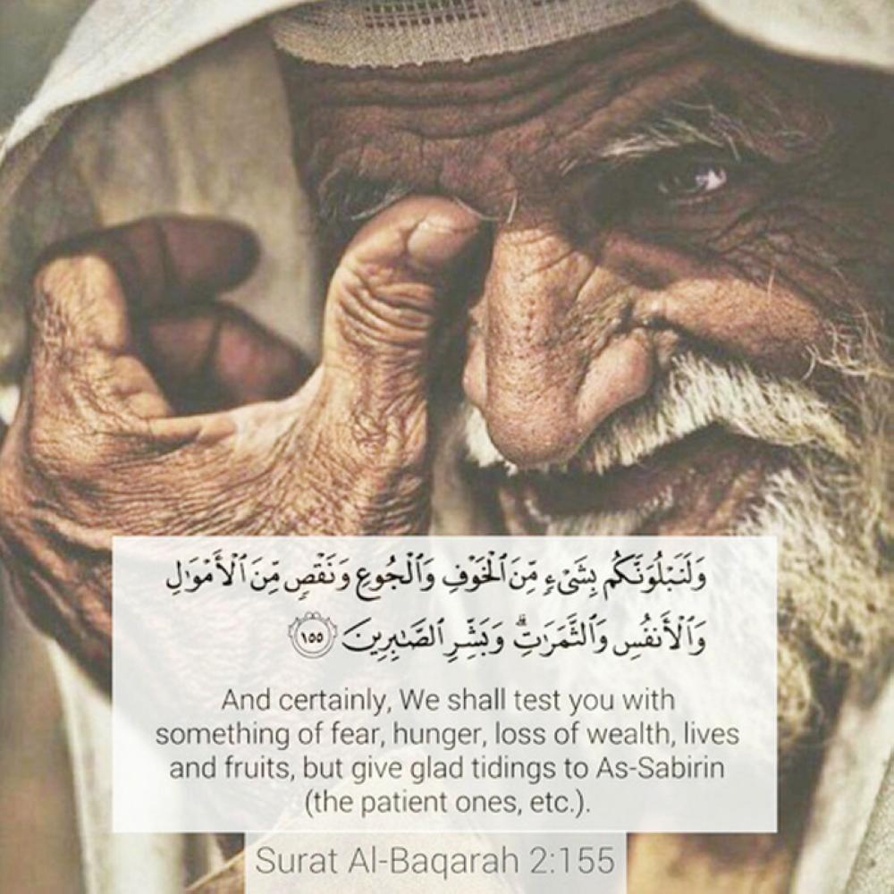 The Patience of Ayyub - Saudi Gazette