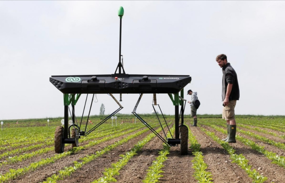 The prototype of an autonomous weeding machine by Swiss start-up ecoRobotix is pictured during tests on a sugar beet field near Bavois, Switzerland. — Reuters