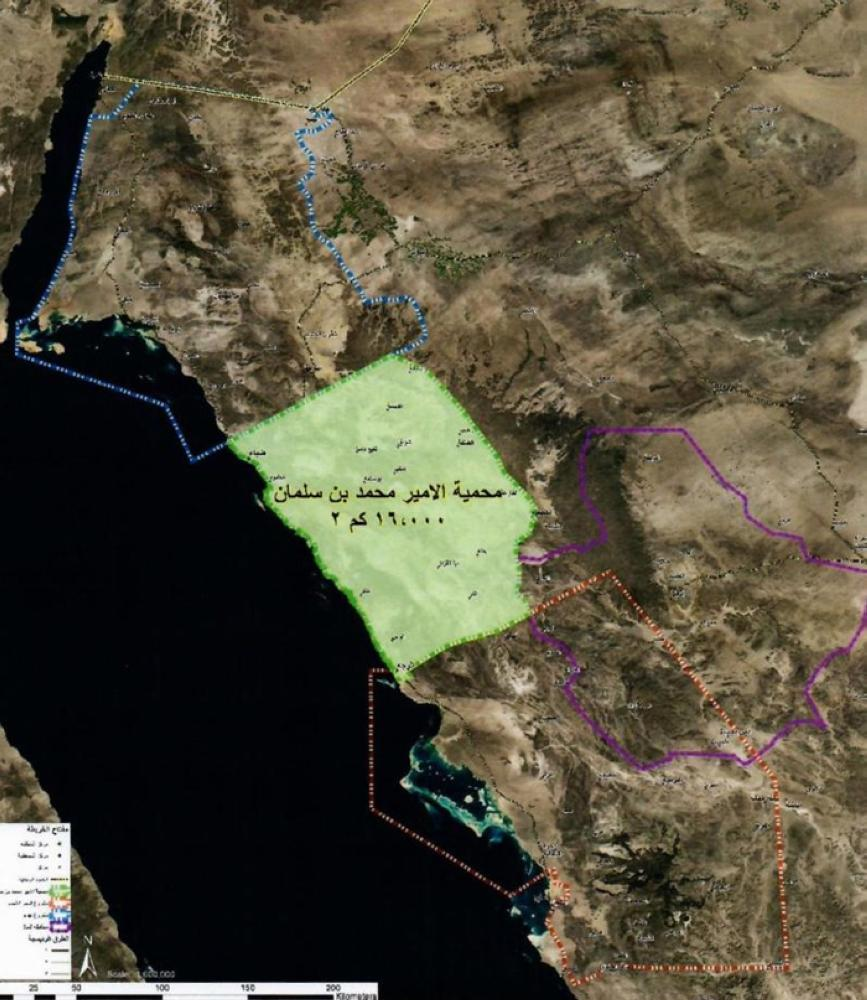 The area located between NEOM Project, Red Sea Project and Al-Ula, also known as Prince Muhammad Bin Salman Natural Reserve, has an area of 16,000 sq. km. The reserve will be under the presidency of the Crown Prince.