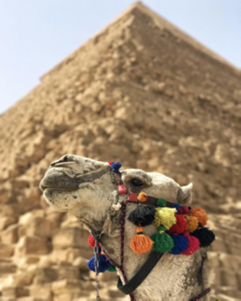 — All Photos by Thuymi Do @AdventureFaktory and Huda Bin Redha