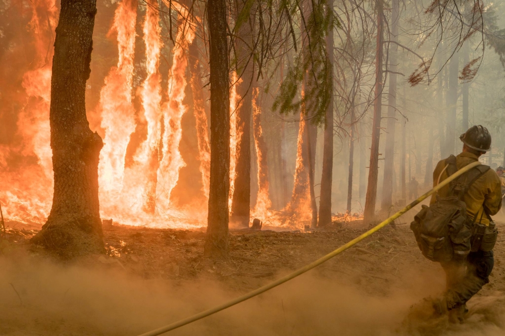 A firefighter fights fire near torching trees as a wildfire burns near Yosemite National Park in this US Forest Service photo released on social media from California on Aug. 6, 2018. — Reuters
