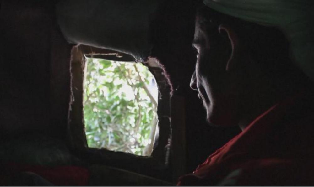Ahmed Houbeichi peers down on the street below from his tree-house. War and poverty have forced him to seek out such a lofty shelter. — Courtesy photo