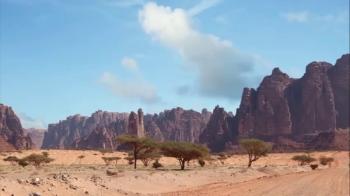 Wadi Al-Disah is located northwest of Prince Muhammad Bin Salman Natural Reserve and southwest of Tabuk.