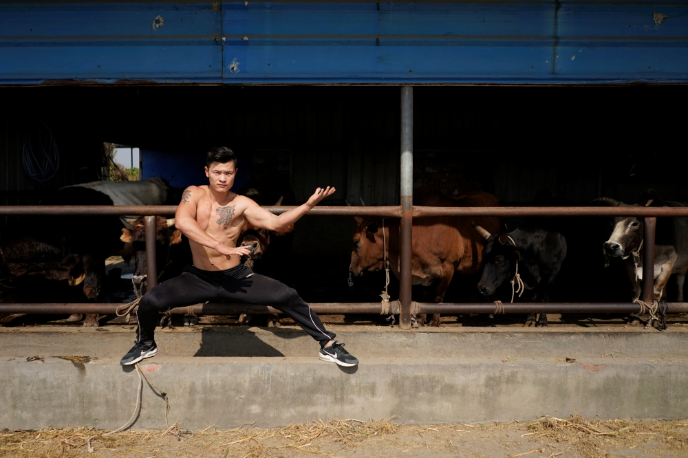 Bullfighter Ren Ruzhi, 24, poses at the bull stable of the Haihua Kung-fu School in Jiaxing, Zhejiang province, China, in this Oct. 27, 2018, file photo. — Reuter