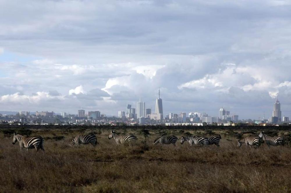The Nairobi skyline is seen in the background as zebras walk through the Nairobi National Park, near Nairobi, Kenya, in this Dec. 3, 2018 file photo. — Reuters