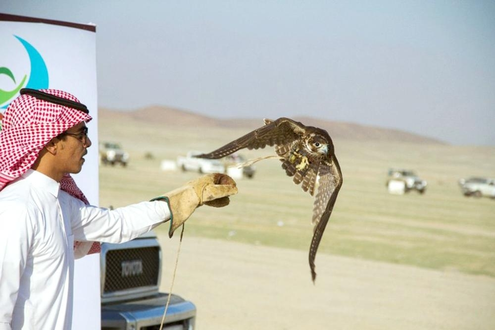 The falconry festival reflects a renewed interest in reviving the deep-rooted Saudi heritage.