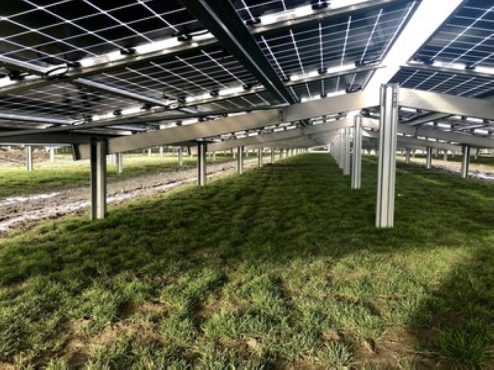 Rear side of Jolywood N-type bifacial modules installed in Zonnepark Rilland