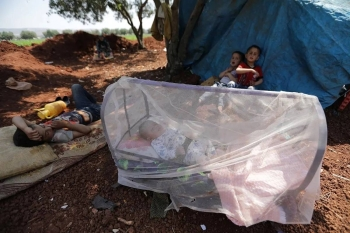 A displaced Syrian baby sleeps in a bed covered with a mosquito net in an olive grove at Atmeh town, Idlib province.