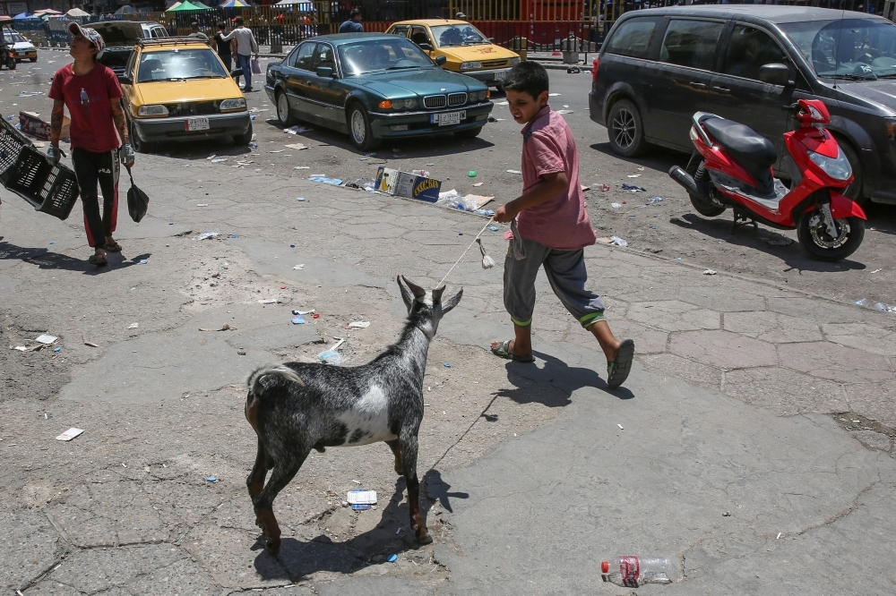 An Iraqi boy pulls a donkey as he walks at Al-Ghazel animal market in the capital Baghdad in this Aug. 2, 2019 file photo. — AFP