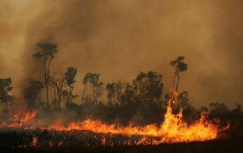 A fire is seen on a tract of Amazon jungle at Tenharim Marmelos Indigenous Land, Amazonas state, Brazil September 15, 2019.  –Courtesy photo