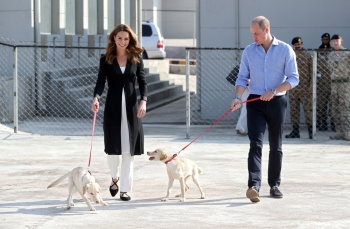 Catherine, Duchess of Cambridge and Prince William, Duke of Cambridge, walk with golden Labrador puppies Salto and Sky as they visit an Army Canine Centre, where Britain provides support to a program that trains dogs to identify explosive devices, in Islamabad, Pakistan, on Friday. — Reuters
