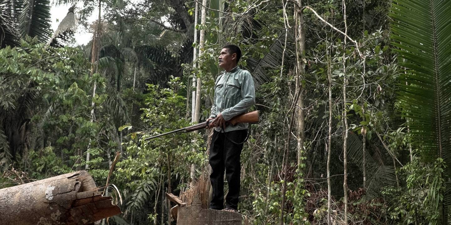 An Indigenous man stands in a clearing where trees have been cut down by suspected land grabbers on the Karipuna Indigenous territory in 2017. -Courtesy photo