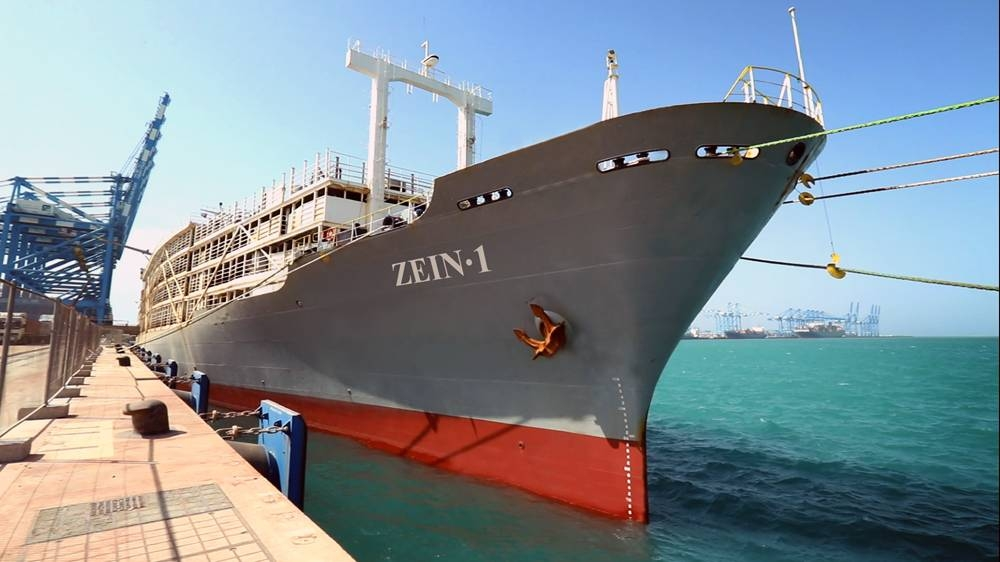 The first shipment of some 4,500 Holstein cows, one of the best breeds for milk production, have arrived at the Khalifa Port from the Republic of Uruguay on ZAIN 1.