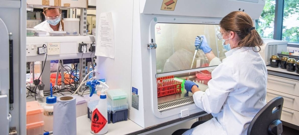 A team of scientists at Oxford University's Jenner Institute and Oxford Vaccine Group is making progress toward the discovery of a safe, effective and accessible vaccine against coronavirus. — Courtesy photo