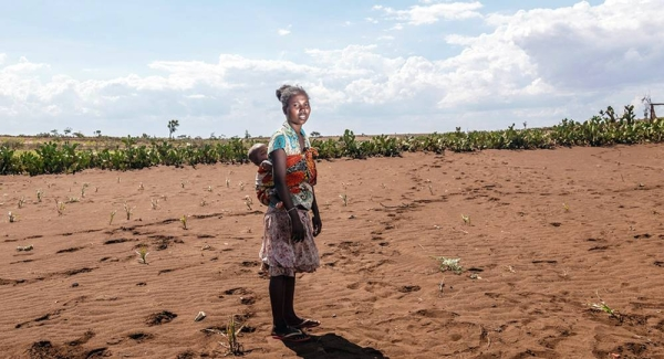 UNICEF is assisting farmers in the recovery of their crops in drought-stricken Madagascar. — courtesy UNICEF/Safidy Andriananten