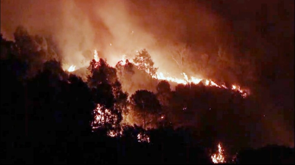 Dozens of panicked tourists and locals were evacuated by boat in Italy and Turkey as forest fires raged in both nations over the weekend.