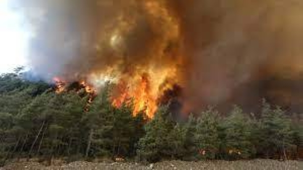 Thousands of people fled their homes north of Athens on Tuesday as a wildfire reached residential areas. — Courtesy file photo