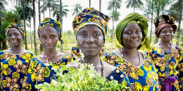 UN Women are helping women farmers in Guinea with new opportunities to generate income and improve community life. — courtesy UN Women/Joe Saade